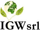 IGW srl