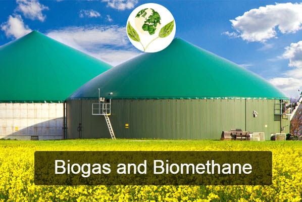 Biogas and Biometano - IGW srl